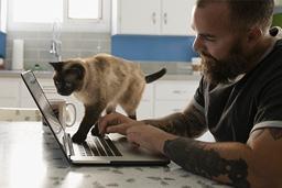 cat climbing on laptop
