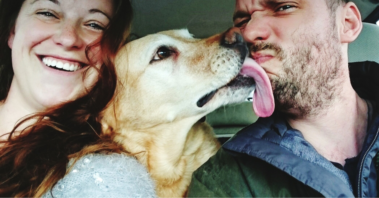 couple in car with dog licking man's face