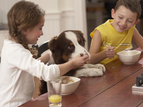kids feeding dog at table