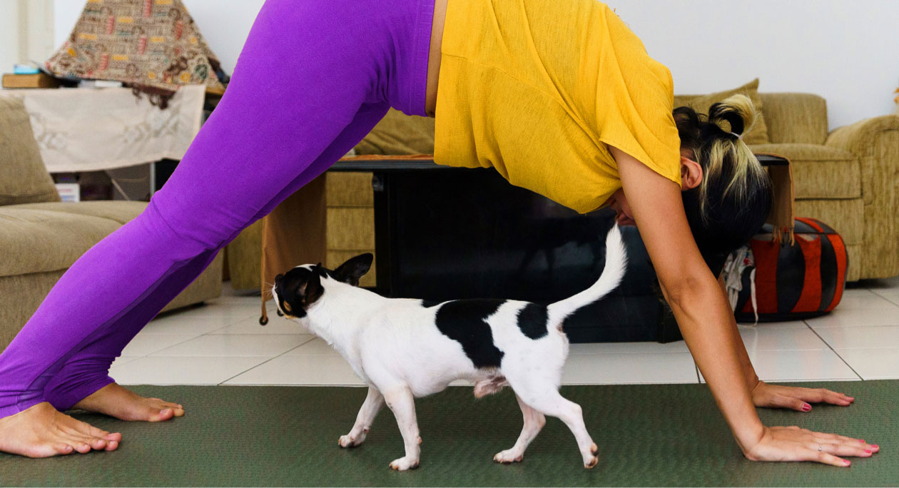 dog playing while a woman is working out